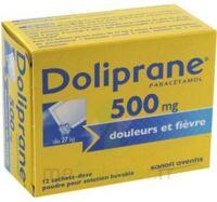 DOLIPRANE 500 mg Poudre pour solution buvable en sachet-dose B/12 à ESSEY LES NANCY