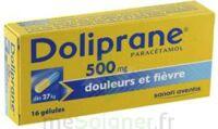 DOLIPRANE 500 mg Gélules B/16 à ESSEY LES NANCY