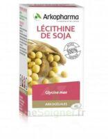 Arkogélules Lécithine de soja Caps Fl/45 à ESSEY LES NANCY