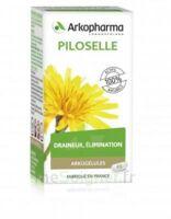 Arkogélules Piloselle Gélules Fl/45 à ESSEY LES NANCY