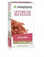 Arkogélules Levure de riz rouge Gélules Fl/45 à ESSEY LES NANCY