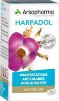 ARKOGELULES HARPAGOPHYTON Gélules Fl/150 à ESSEY LES NANCY