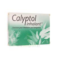 CALYPTOL INHALANT, émulsion pour inhalation par fumigation à ESSEY LES NANCY