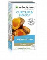 Arkogelules Curcuma Pipérine Gélules Fl/45 à ESSEY LES NANCY